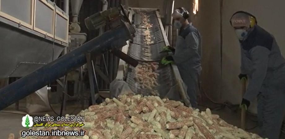 مستندی از توقف تولید کلین کلراید گلستان پشت در واردات